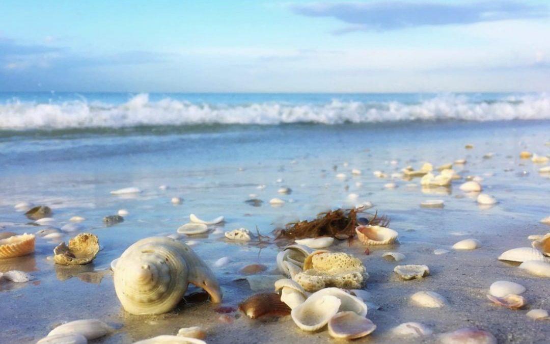 Branding a Florida Beach Area